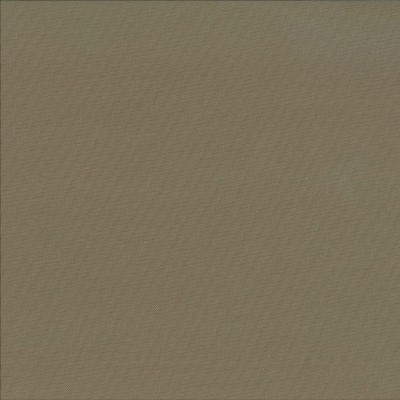 Spectrum Almond   100% cotton    137cm | Plain    Dual Purpose