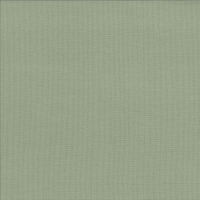 Spectrum Flax   100% cotton    137cm | Plain    Dual Purpose