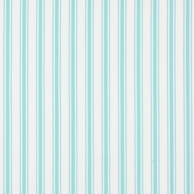 Tai Paradise 100% cotton 140cm | Vertical Stripe Embroidery