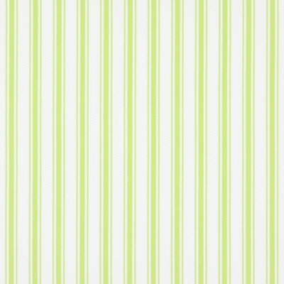 Tai Lime 100% cotton 140cm | Vertical Stripe Embroidery