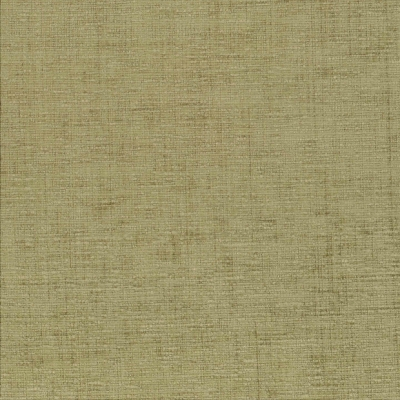 Zephyr Leaf  100% Polyester  140cm | Plain  Dual Purpose