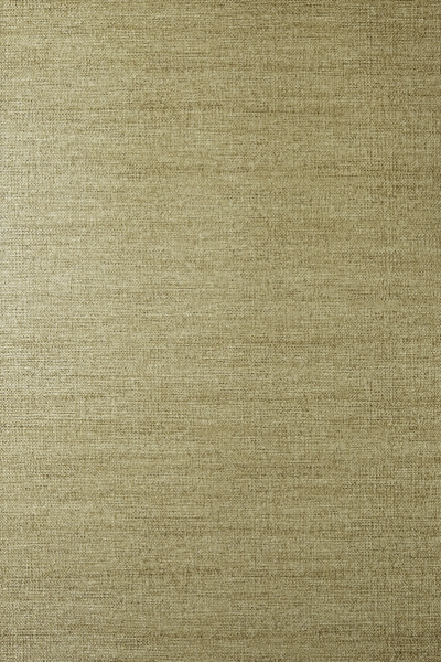 Venus Gilt 100% paper 53cm wide | Plain Wallpaper