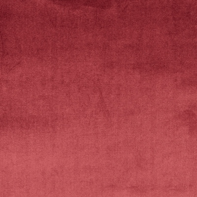 Velour Damson 100% Polyester 143cm | Plain Dual Purpose 40,000 Rubs