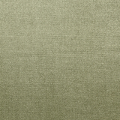 Velour Willow 100% Polyester 143cm | Plain Dual Purpose 40,000 Rubs