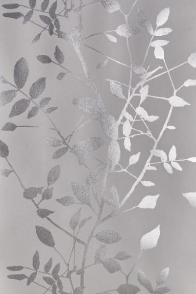Drama Silver Shadow 65cm