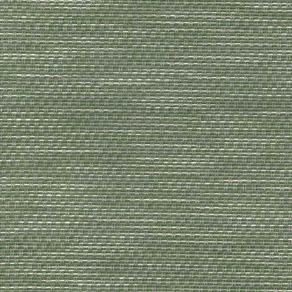 Trade Forest  88% Olefin/ 12% Acrylic  140cm | Plain  Upholstery >35,000 Rubs