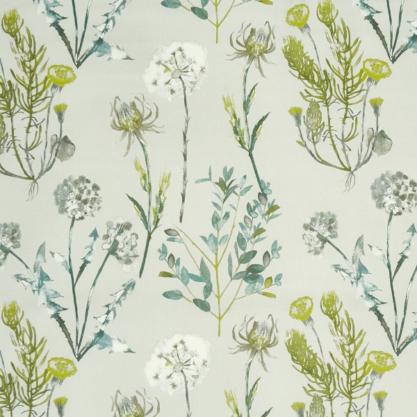 Allium Fennel  100% Cotton  Approx. 140cm | 64cm  Curtaining