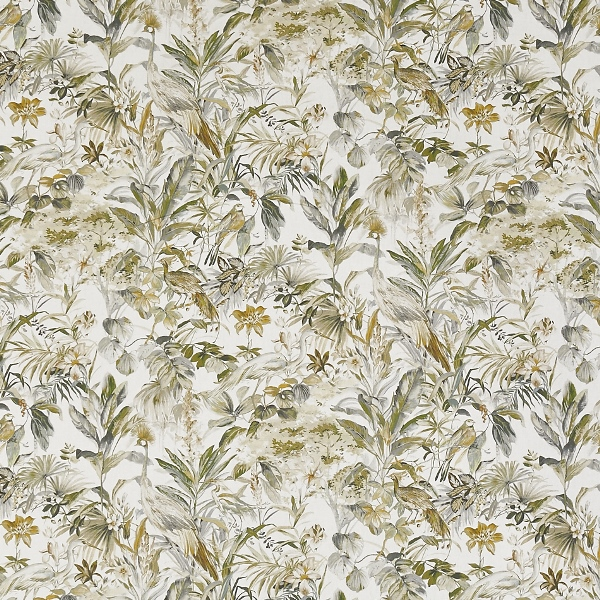 Paradiso Fennel  100% Cotton  Approx. 140cm | 64cm  Curtaining