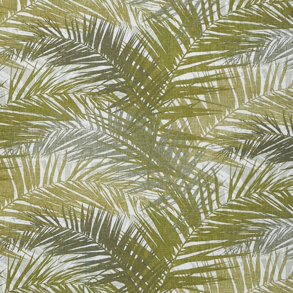 TAHITI | JUNGLE PALM