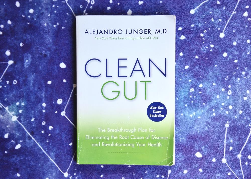 alejandro-junger-clean-gut-review