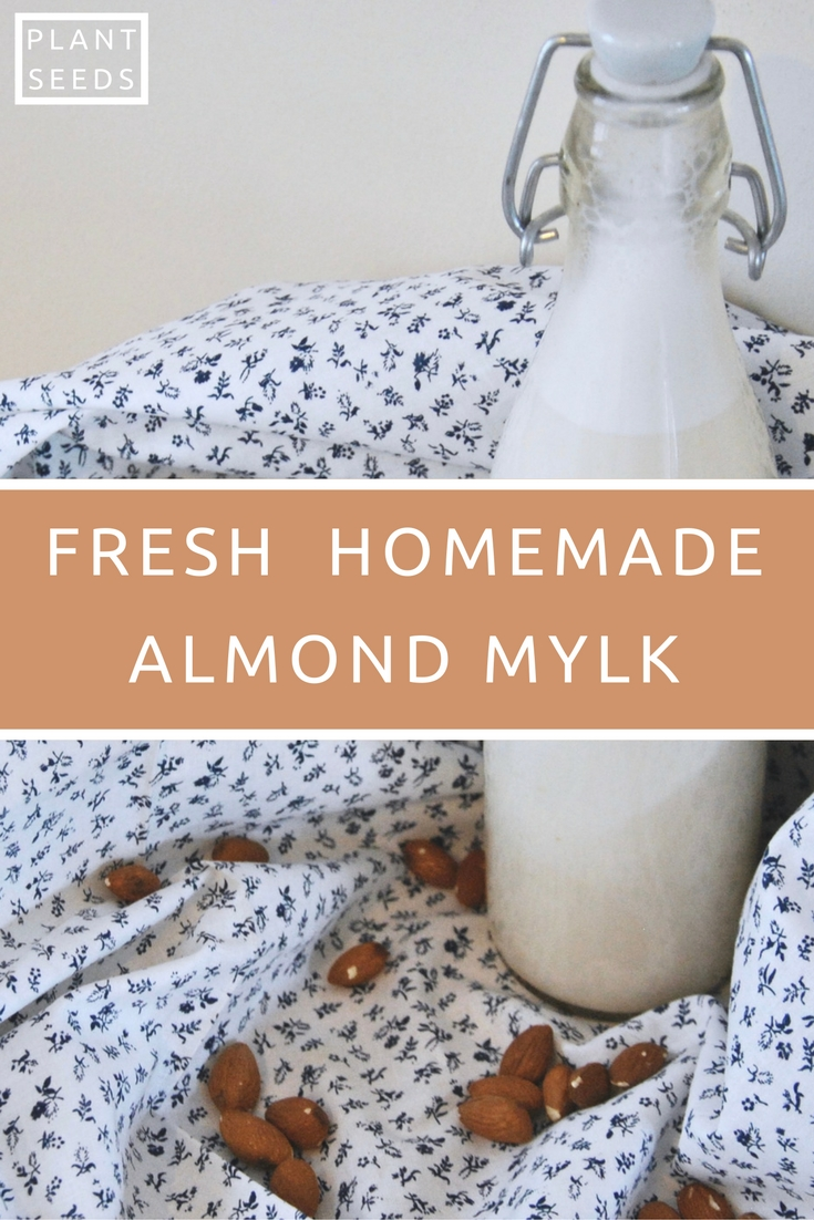 fresh-homemade-almond-mylk