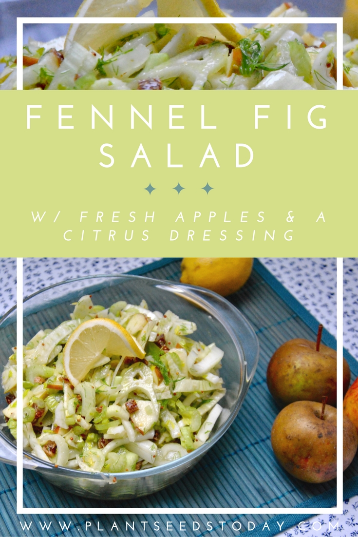 Fennel Fig Salad w/ Fresh Apples & A Citrus Dressing