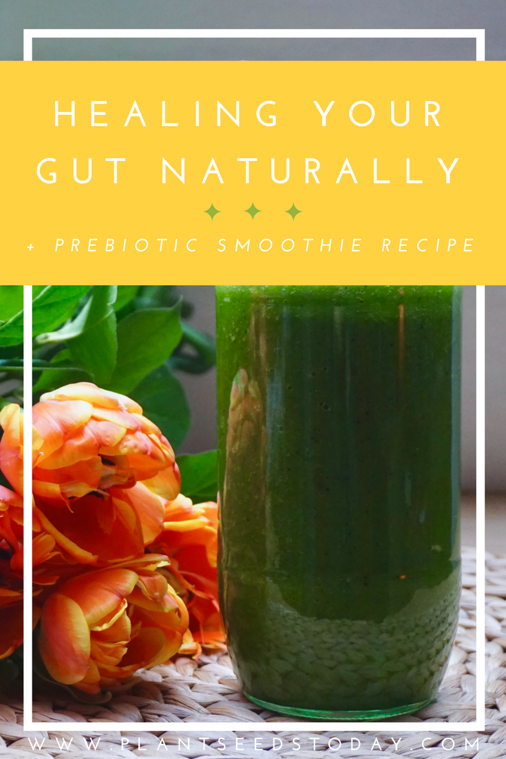 Healing Your Gut Naturally + Prebiotic Smoothie