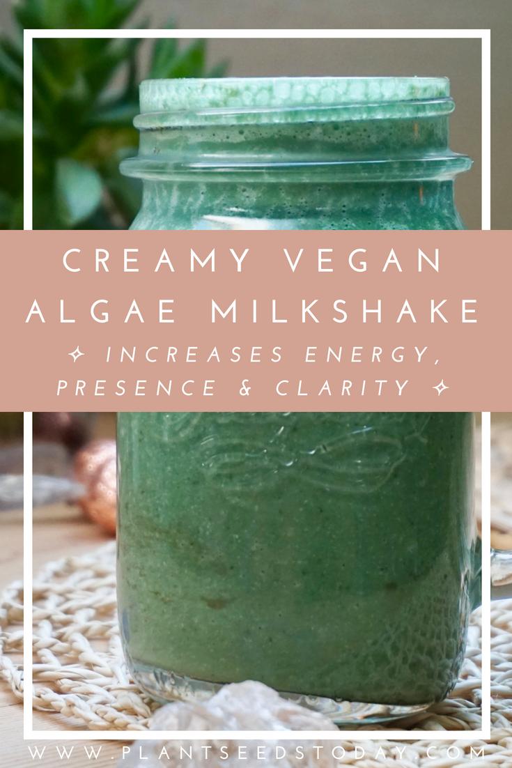 creamy-algae-milkshake