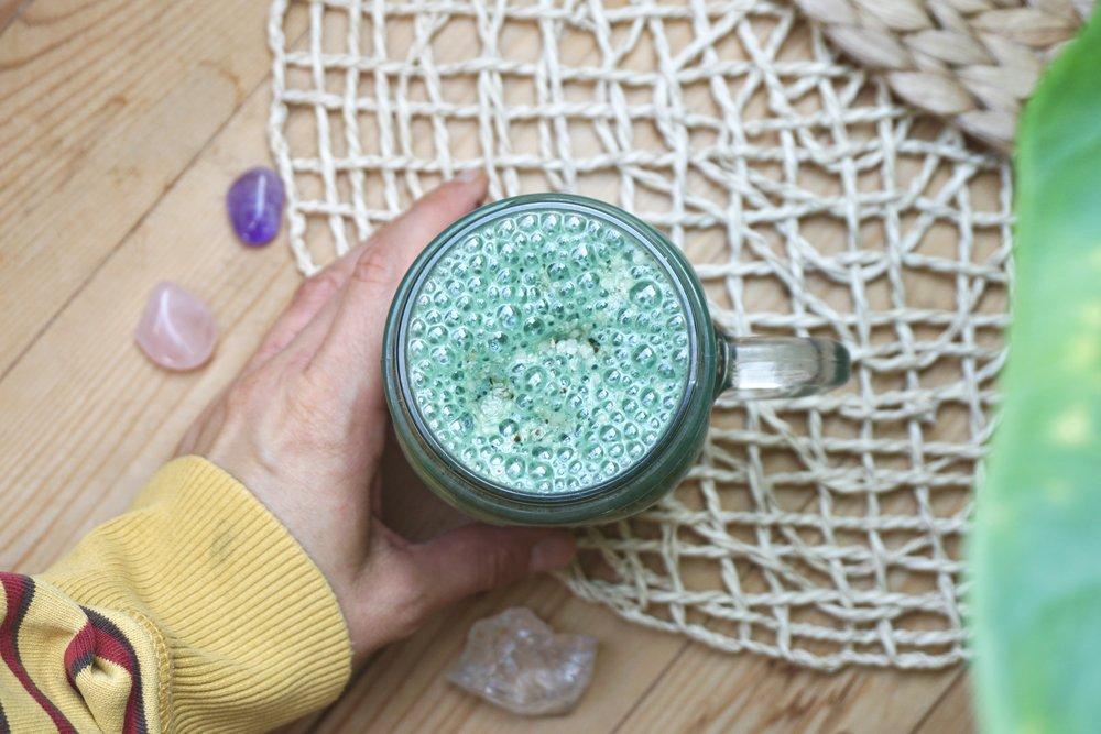 creamy-algae-milkshake-recipe