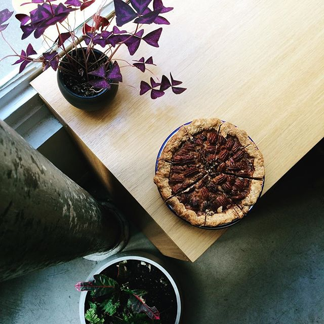 Pie of the week is Pecan! It's full of nuts and caramely gooiness. Next week will be the long awaited Pumpkin pie #pecan #pecanpie #gonuts #pieoftheweek