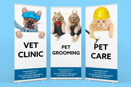 POP UP BANNERS Pop up banners are an affordable and effective way to promote events. They can be organised very quickly. If you are organising an event or exhibition, deliver your message with our fantastic quality pull up banners.