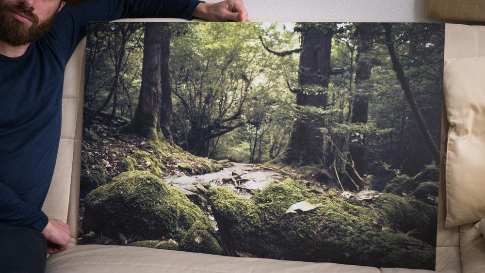 """""""Millenial green"""" en 60x90cm Impression directe sur Dibond ( support rigide et très résistant )"""