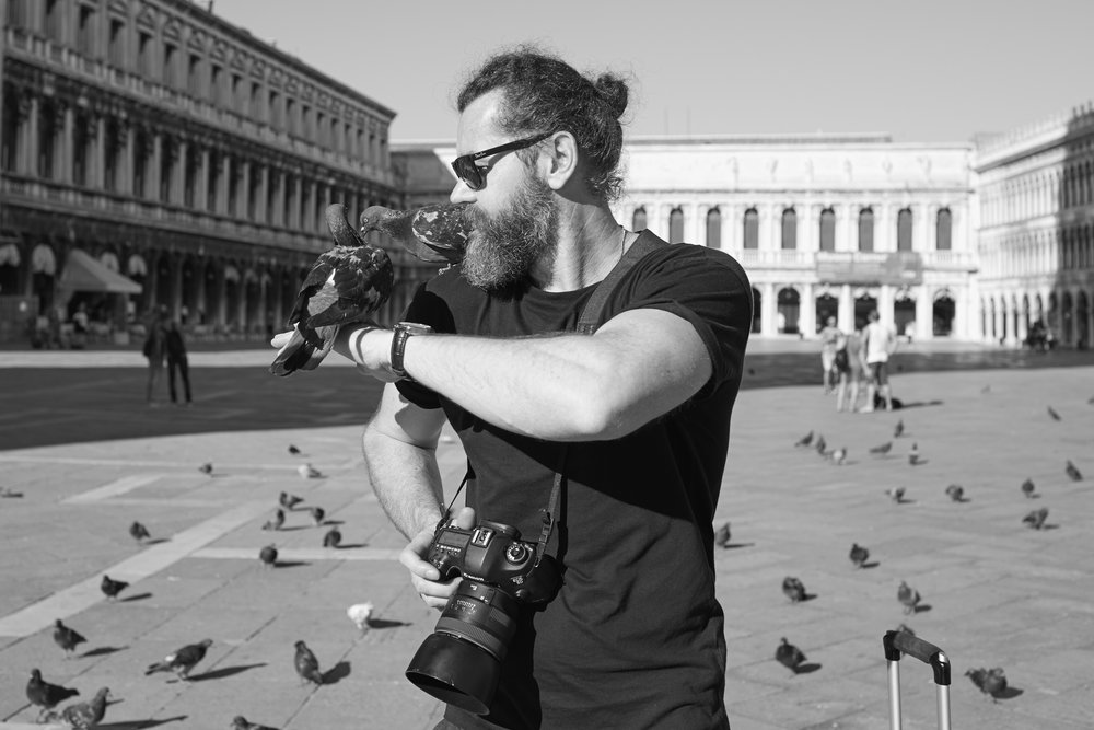 Daniel the pigeon whisperer in San Marco Square Venice