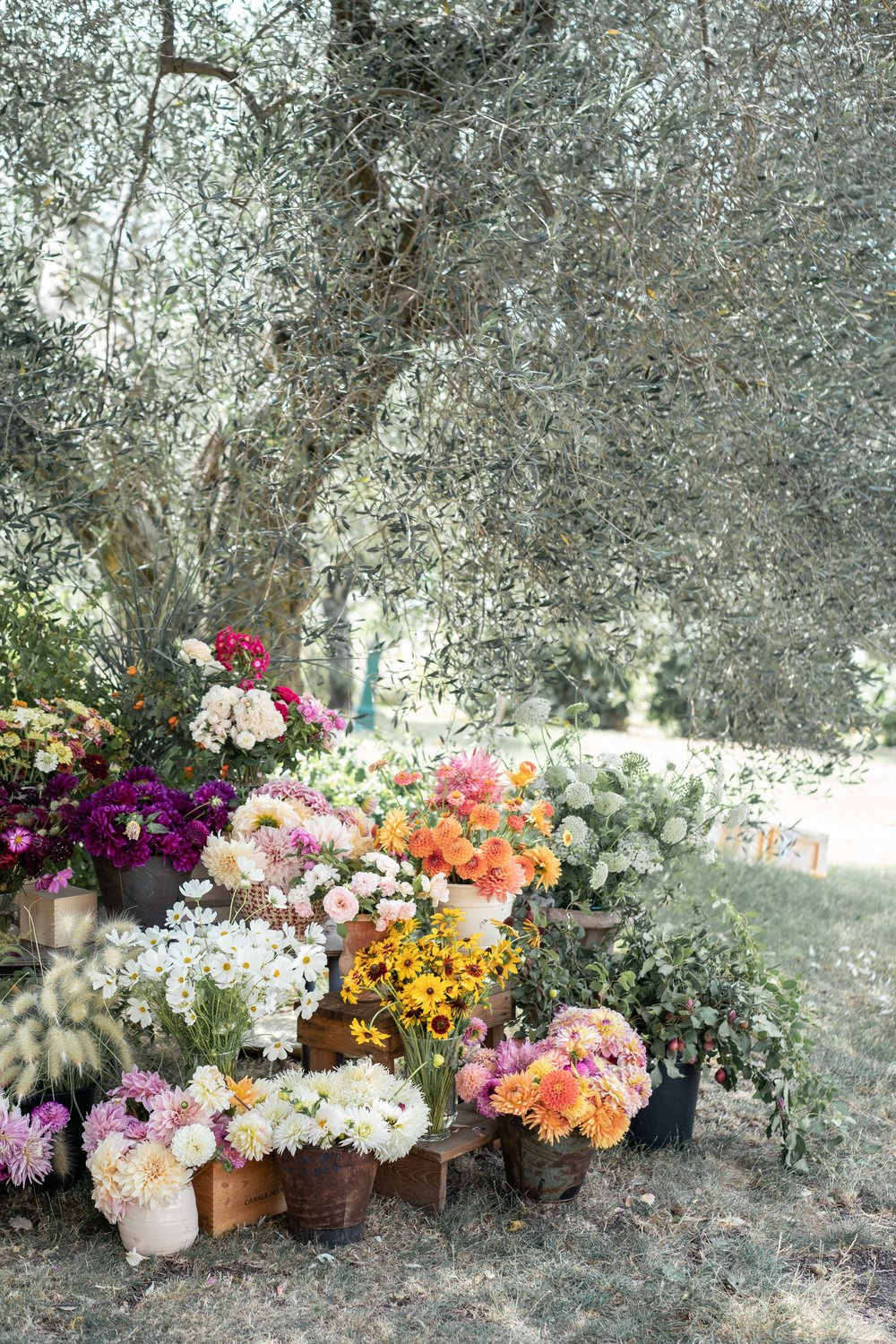 Floristry Workshop Tuscany by Lost In Love Photography
