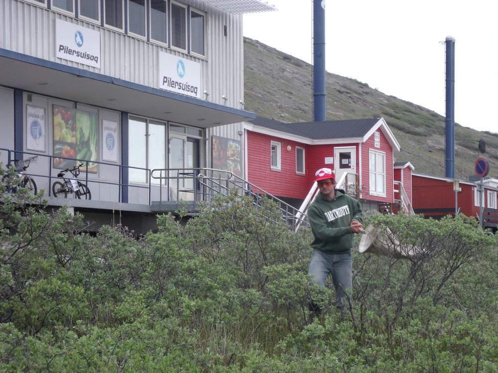 Greenland 2012 490.jpg