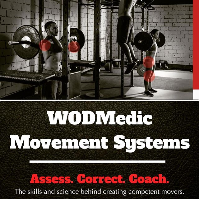 Learn the skills and science necessary to build competent movers.  This is a complete, ready to go system that puts the functional in functional fitness.  It's for every box owner and coach that works with fitness athletes and wants to offer a higher quality of service to their athletes.  It's a way to elevate your expertise and separate your box, while generating extra revenue for the gym.  #crossfit #crossfitcoach #crossfitaffiliate #wod #functionaltraining #functionalfitness #fitnesscoach #mobility #mastery