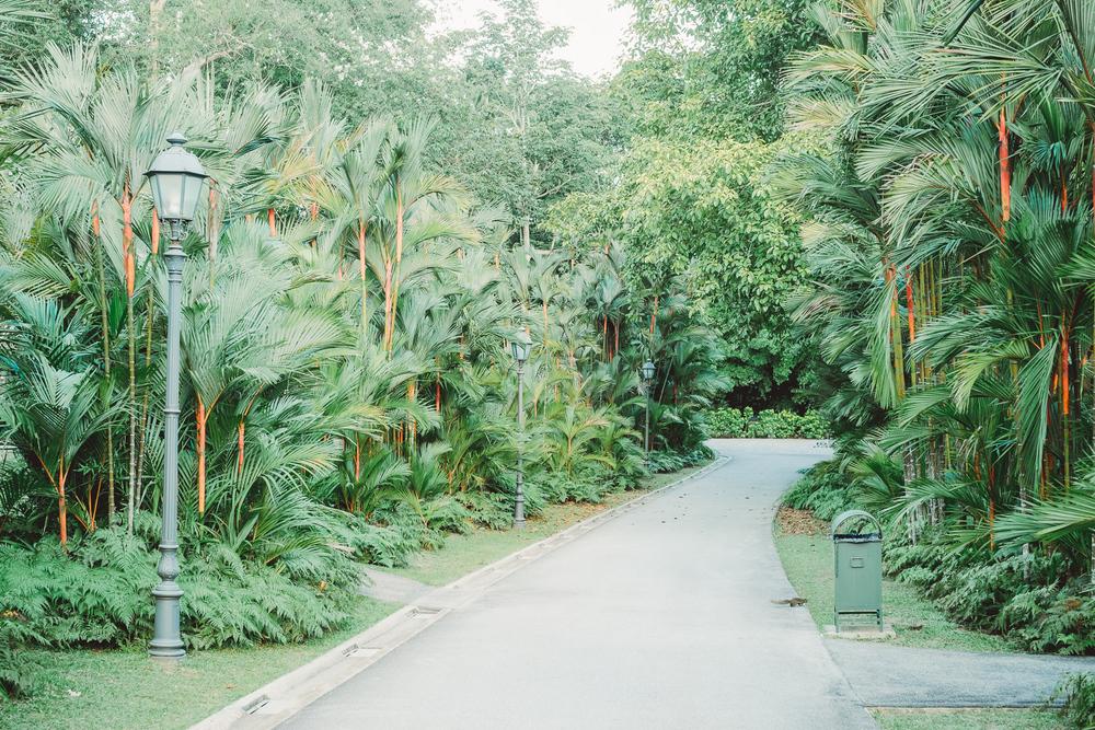 118_Singapore_Mai_2015.jpg