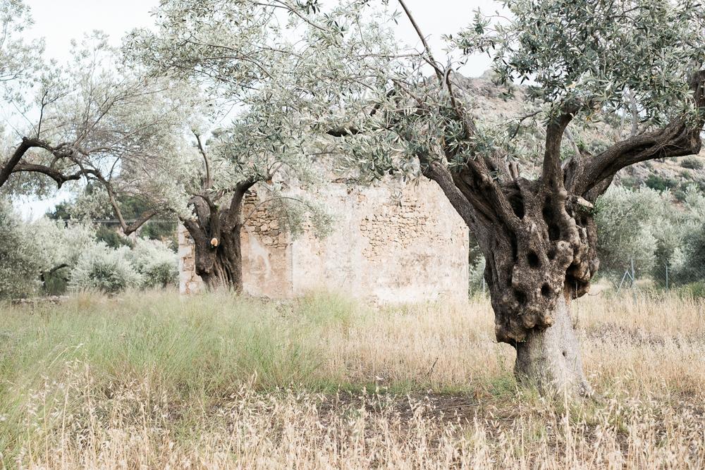 Griechenland_Mai_2016-6876.jpg