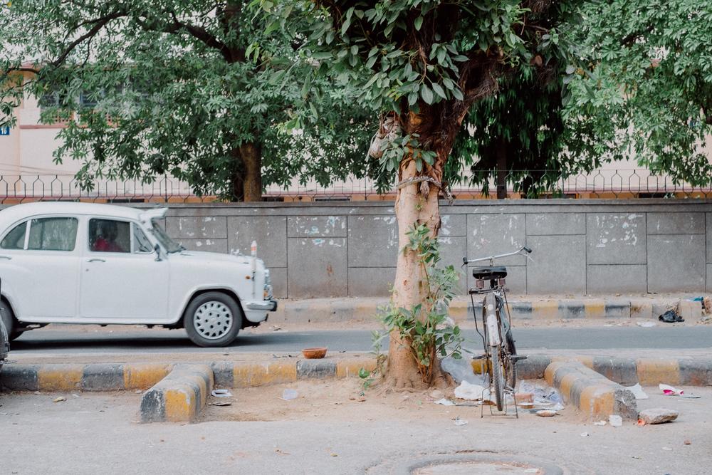 033_Delhi_Mai_2016.jpg