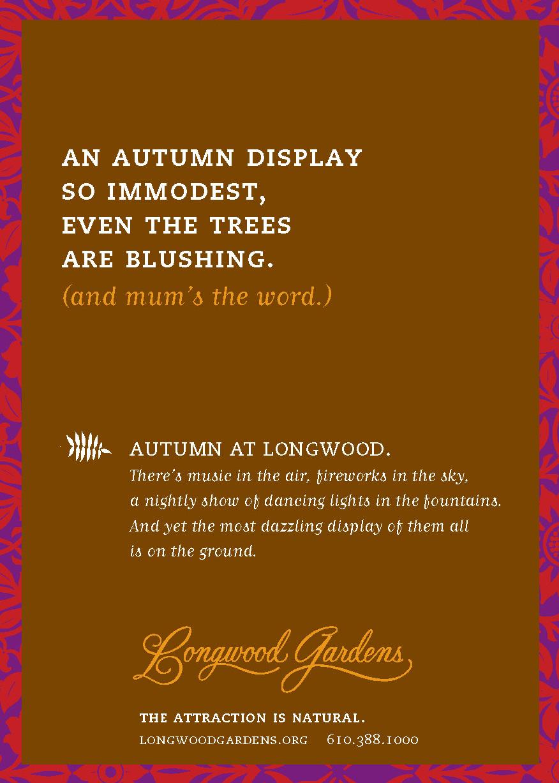 1-longwood-ad-campaign.jpg