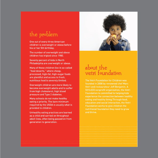 2-Vetri-Foundation-Brochure.jpg