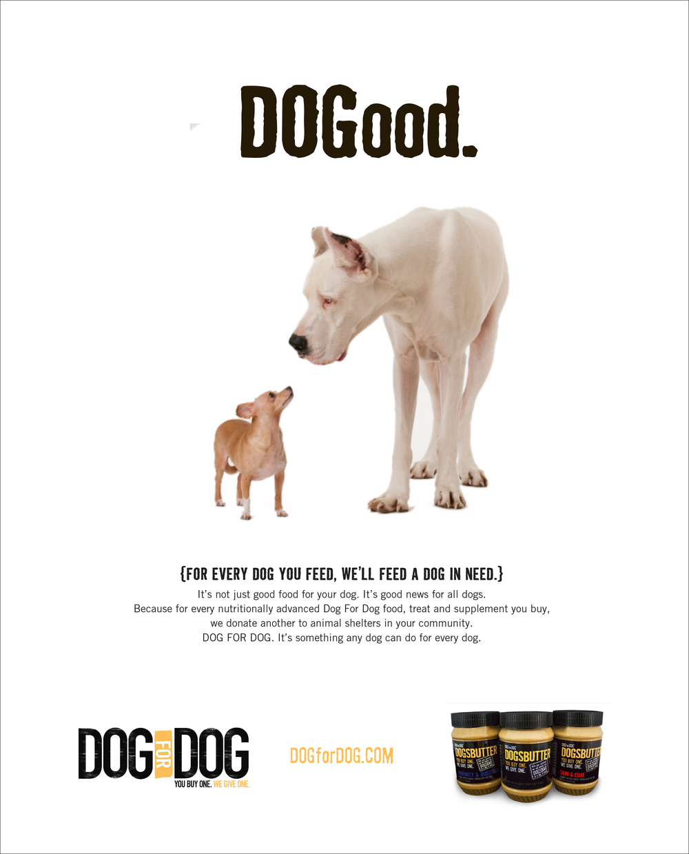 3-dog-interior-ad.jpg