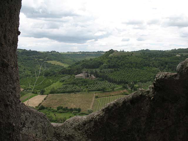 cortona-hillside.jpg