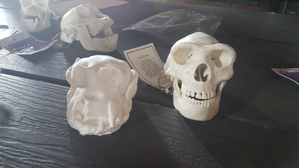 camper made skull