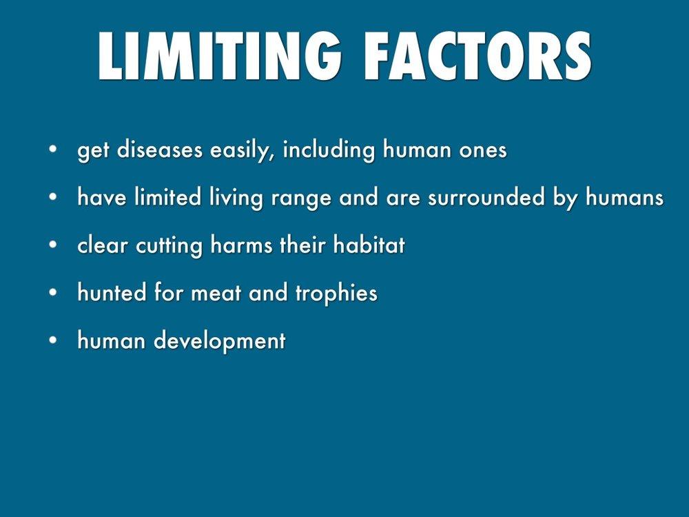 limitingfactorsforprimates
