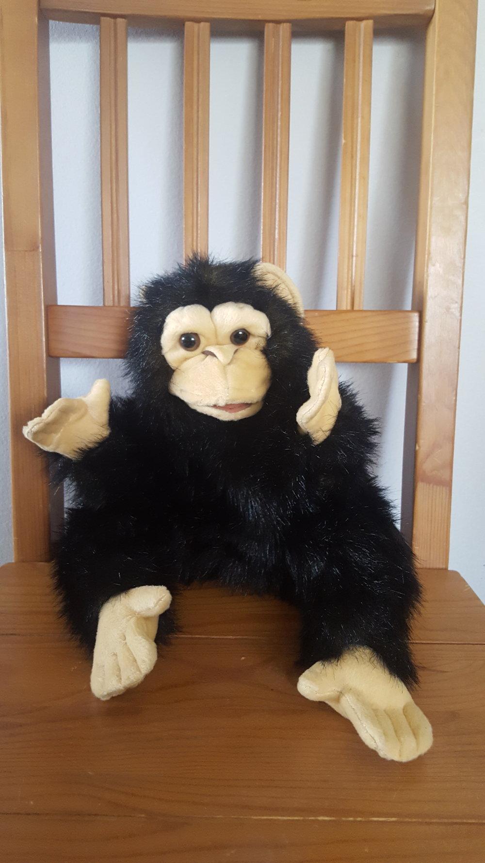 chimpanzeepuppet