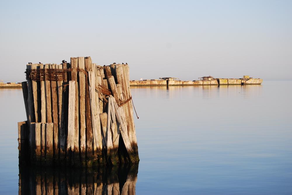 TENTATIVE Chesapeake Bay 1.jpg