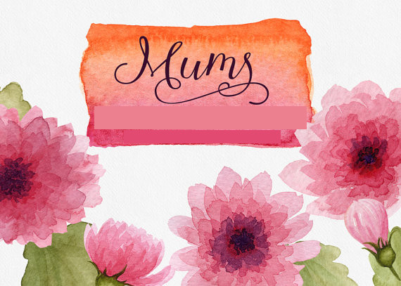 Watercolor Mums