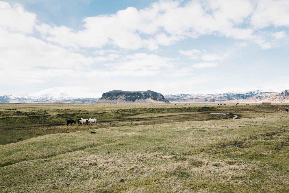 20150424_Iceland_0013-2.jpg