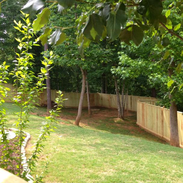 backyard_sample.jpg