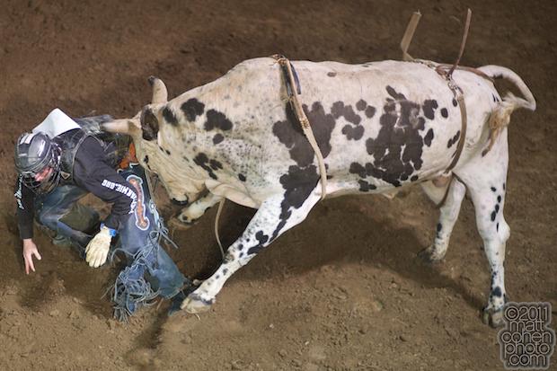 Tyler Willis - 2011 Clovis Rodeo