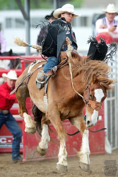 Bradley Harter - 2011 Clovis Rodeo