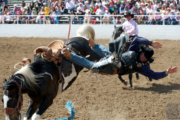 Jesse Bail - 2011 Clovis Rodeo