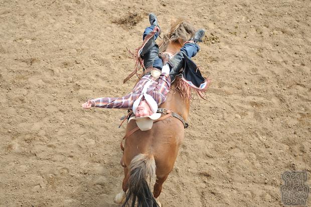Will Lowe - 2011 Clovis Rodeo
