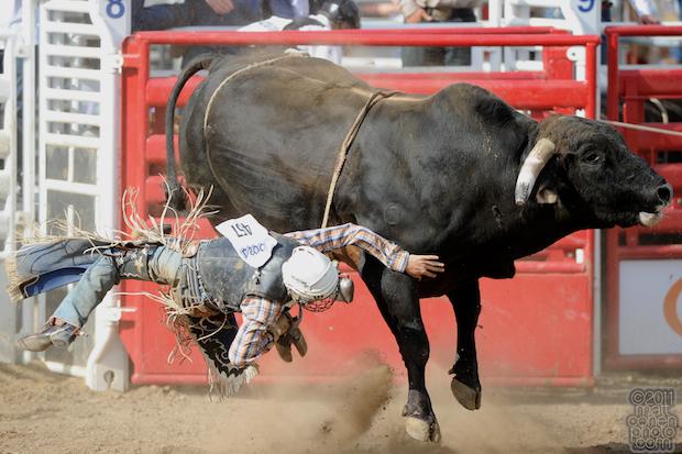 Brady Scott Williams - 2011 Clovis Rodeo