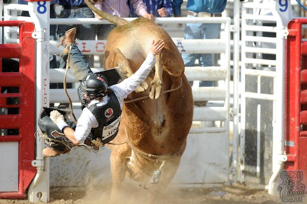Clayton Savage - 2011 Clovis Rodeo