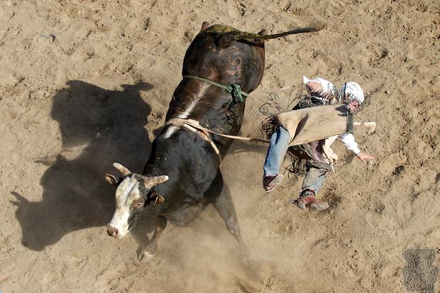 Bryce Brown - 2011 Clovis Rodeo
