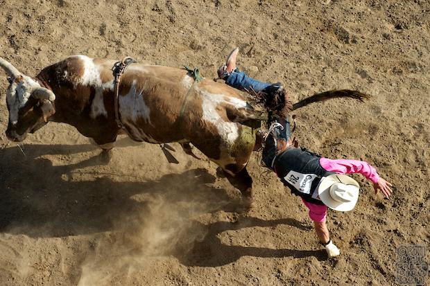 Ardie Maier - 2011 Clovis Rodeo