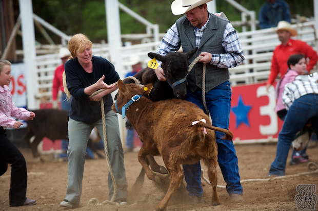 Kiddie Calf Scramble - Mother Lode Round-Up