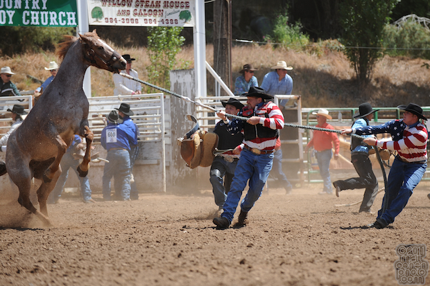 Team Bronc Riding - Mother Lode Round-Up